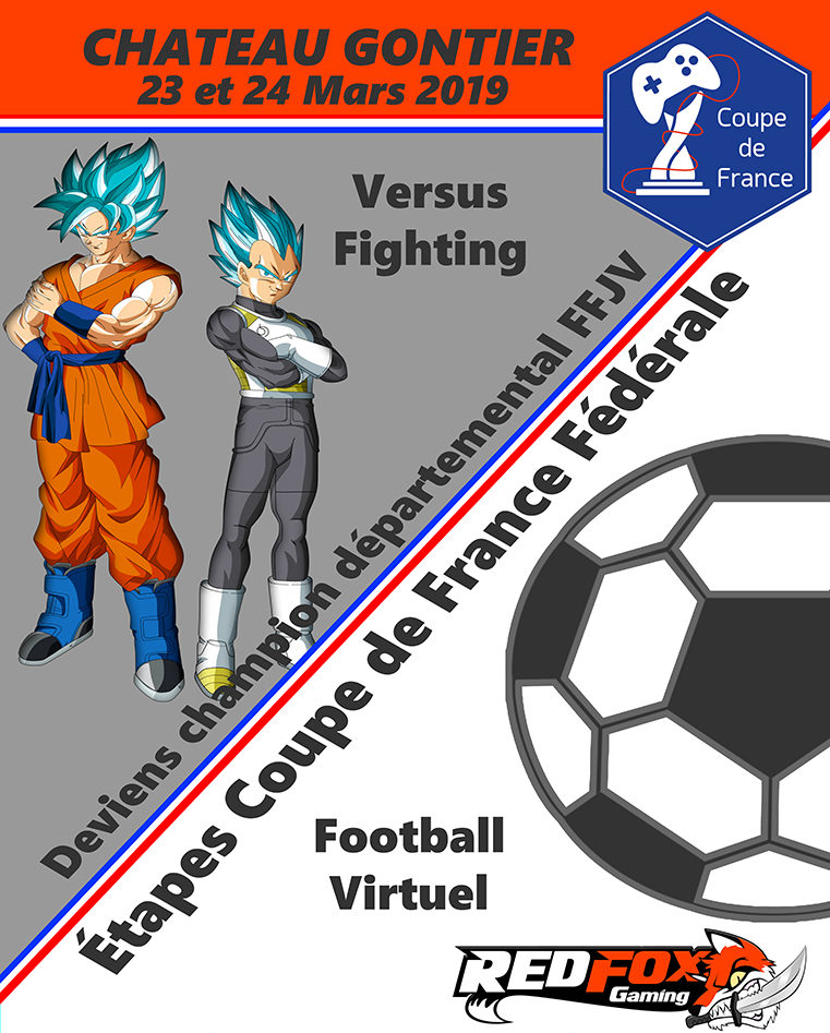 Qualification Coupe de France FFJV (Football Virtuel et Versus Fighting)